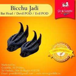 Bicchu Buti  Bat Head   Devil POD   Evil POD  बिच्छू बूटी   to Reduce Ill Effects of Saturn