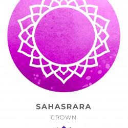 7 Yoga Chakras   Kundalini Chakras   Shat Chakras Wall Stickers for Chakra Meditation   Yoga Meditation (Set of 7 Chakras) - Size 18 x 12 inch